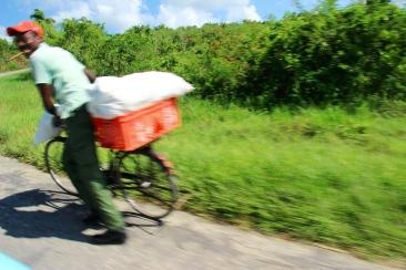 A lo cubano en la autopista