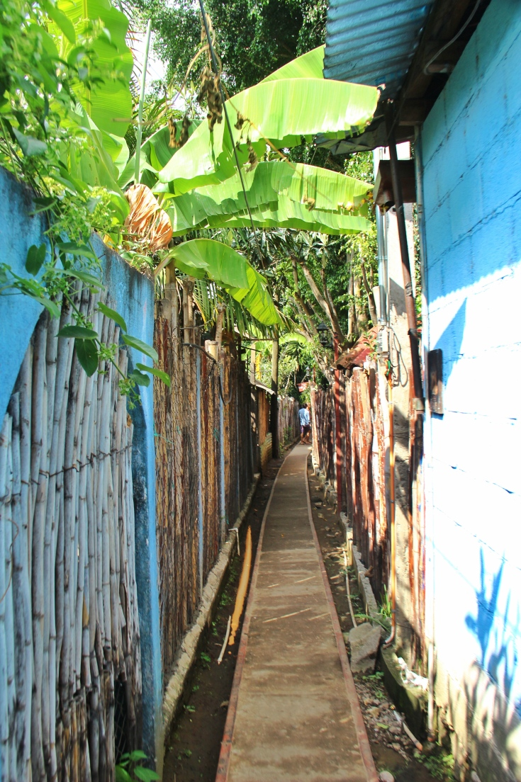 Narrow Streets in San Marcos de Laguna