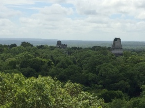 View from Temple IV (highest)