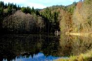 Some pretty lake